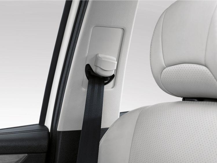 cortez-seat-belt